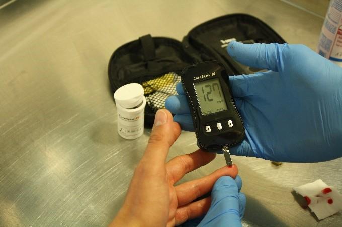 Richtig Blutzucker messen